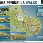 Reference book covering all the current walks on Banks Peninsula.