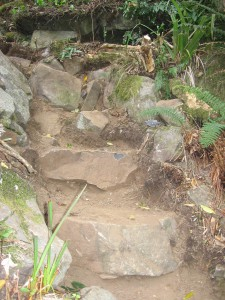 Former rockfall transformed into natural steps